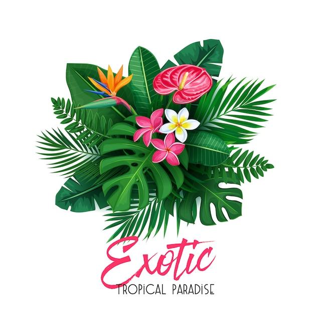 Tropical con hojas y flores. Vector Premium