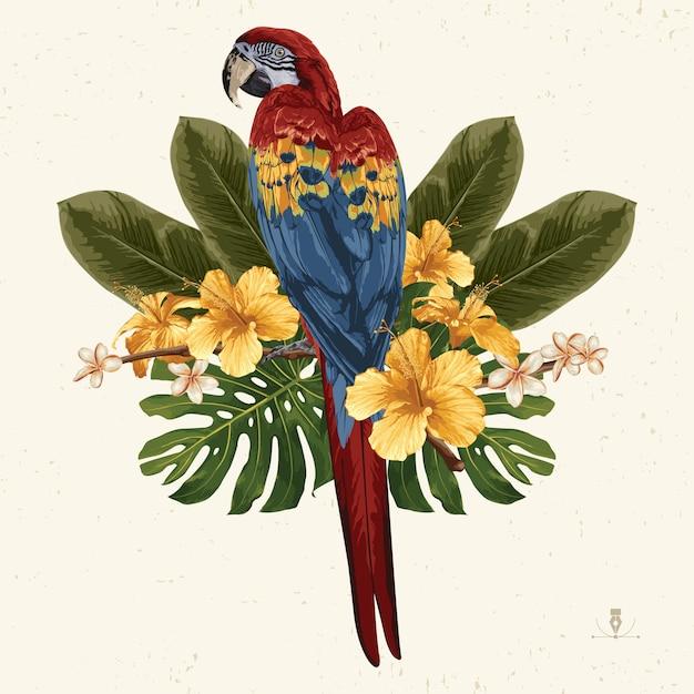 Tropical verano clip art. emblema de verano útil para el diseño de fondo. Vector Premium