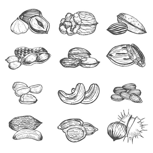 Tuercas set hand draw sketch. estilo vintage. Vector Premium