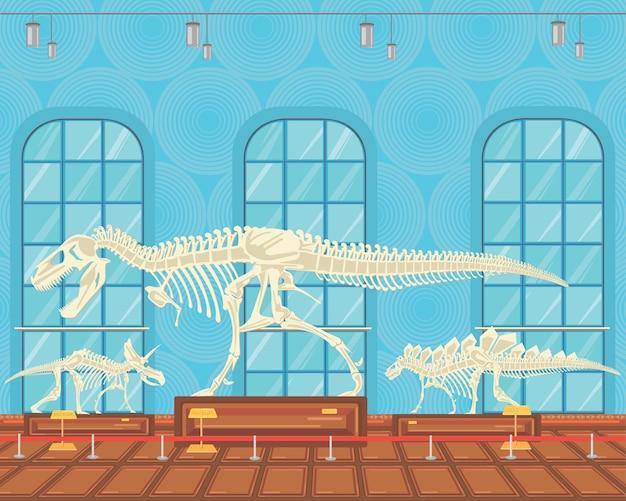 Tyrannosaur rex huesos esqueleto en exposición del museo. Vector Premium