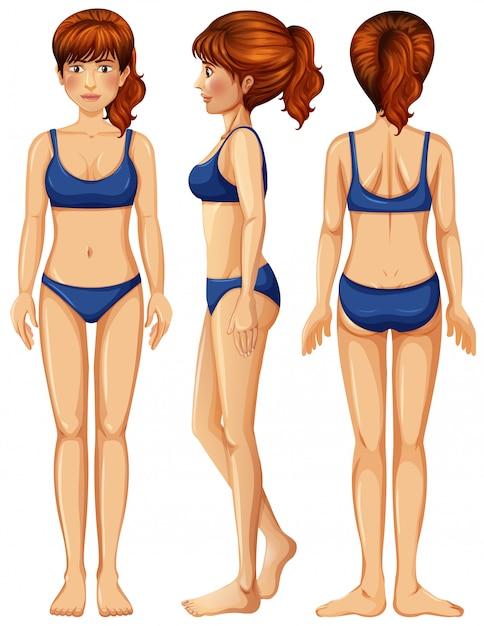 Un vector de cuerpo femenino | Descargar Vectores Premium