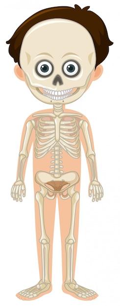 Anatomía Hiperdimensional Del Hombre - Home Rumah