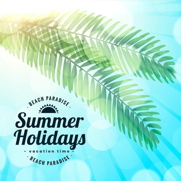 Vacaciones de verano playa paraíso hojas de fondo vector gratuito