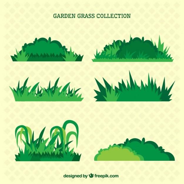Arbusto Fotos Y Vectores Gratis