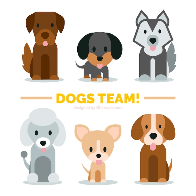 Variedad de cachorros lindos en diseño plano vector gratuito