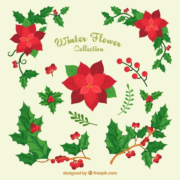 variedad de flores navideas y murdago