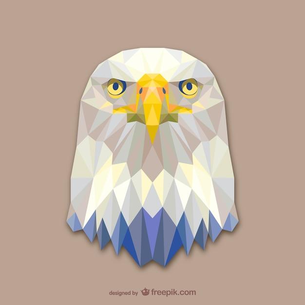 Aguila Calva | Fotos y Vectores gratis