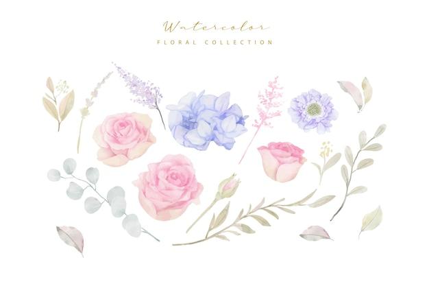 Vector de colección de flores de acuarela vector gratuito