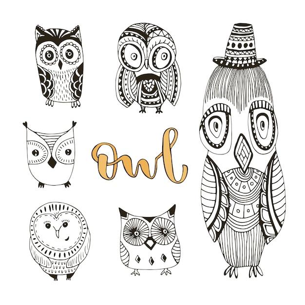 Vector conjunto de lindos doodle búhos. colección de aves aisladas ...