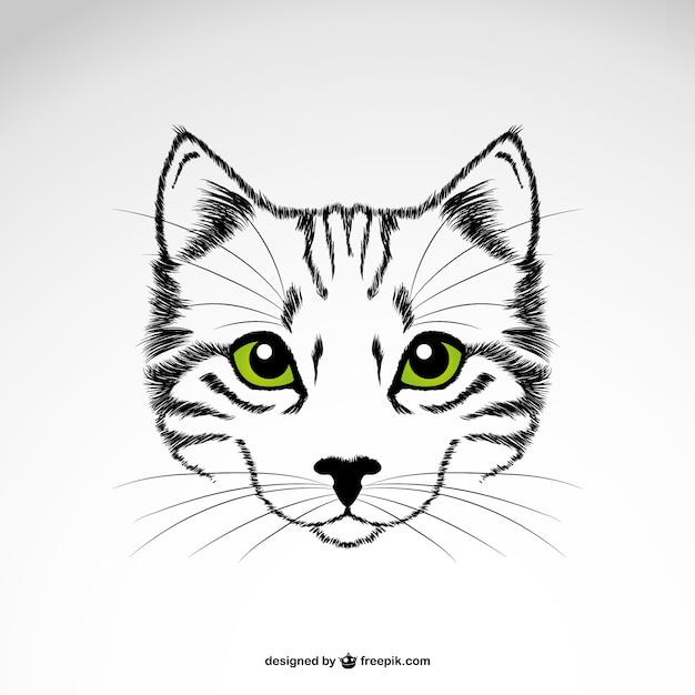 Vector gato con ojos verdes Vector Premium