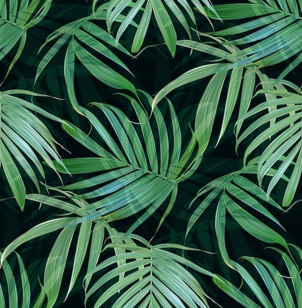Vector palmeras tropicales hojas de patrones sin fisuras. Vector Premium