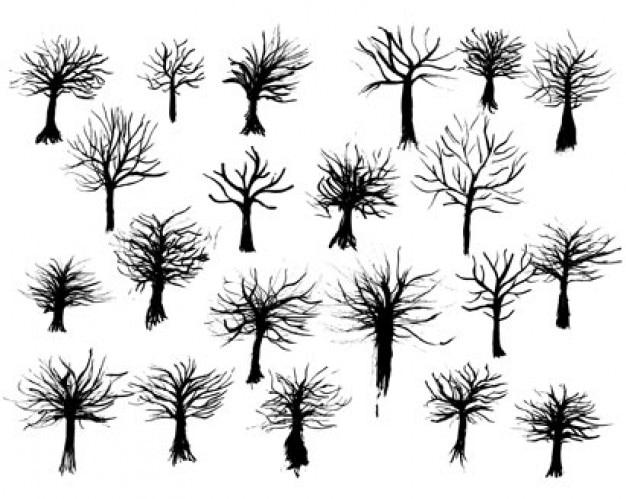 Arboles Secos Vectores Vectores de Tinta árbol