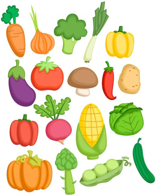 Vegetales Vector Premium