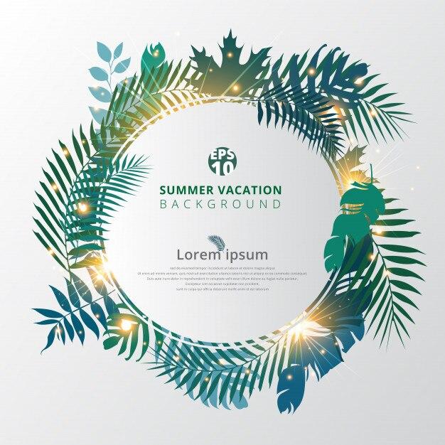 Verano tropical con hojas de palmera exóticas o plantas y efecto de ...