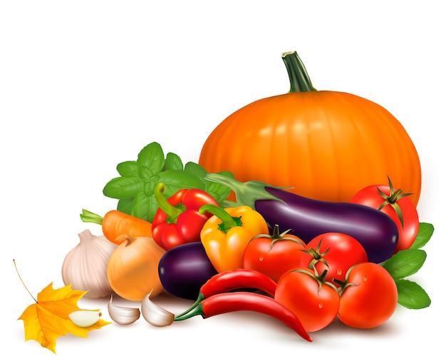 Verduras frescas con hojas. alimentación saludable Vector Premium