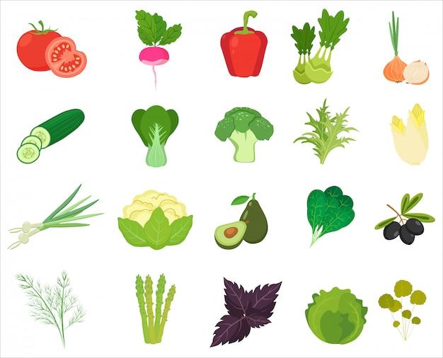 Verduras y hierbas frescas de color iconos planos. Vector Premium