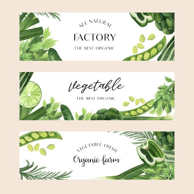 Verduras verdes acuarela orgánica de la granja fresca para el menú de alimentos vector gratuito