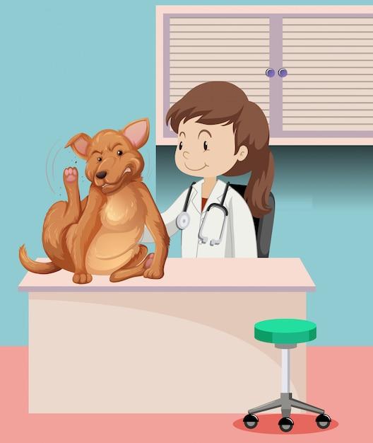 Veterinario con animal enfermo vector gratuito