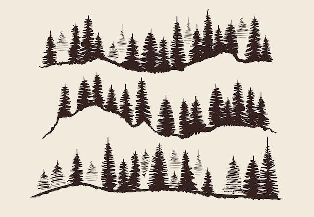 Vintage grabado en bosque. doodle sketch abetos vector conjunto Vector Premium