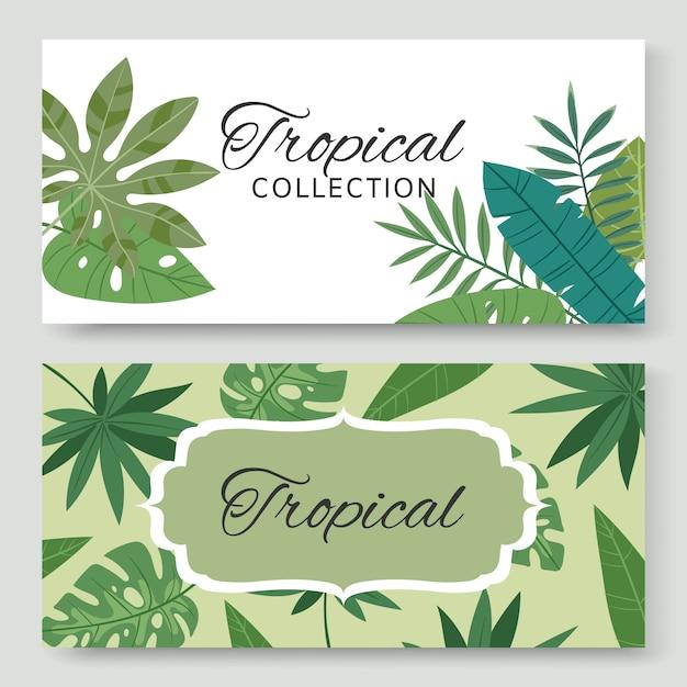 Vintage pancartas con hojas verdes tropicales y plantas exóticas ilustración. invitación de la naturaleza. botánica. colección de pancartas decorativas tropicales naturales. Vector Premium