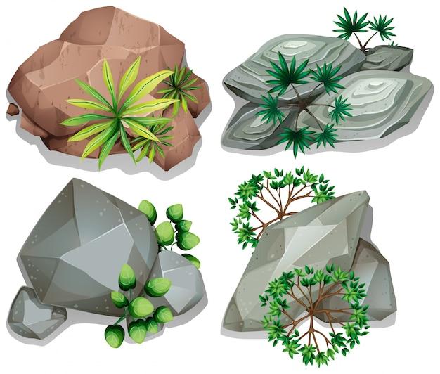 Vista aérea de rocas con árboles en blanco vector gratuito