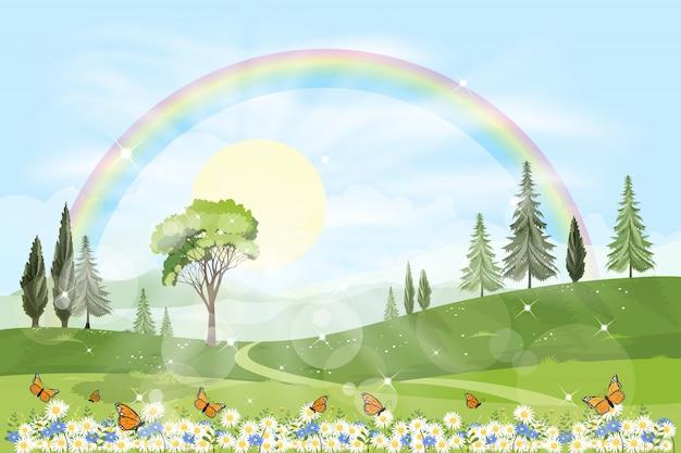 Vista panorámica del campo de primavera con arco iris y sol brillando en el bosque de follaje Vector Premium