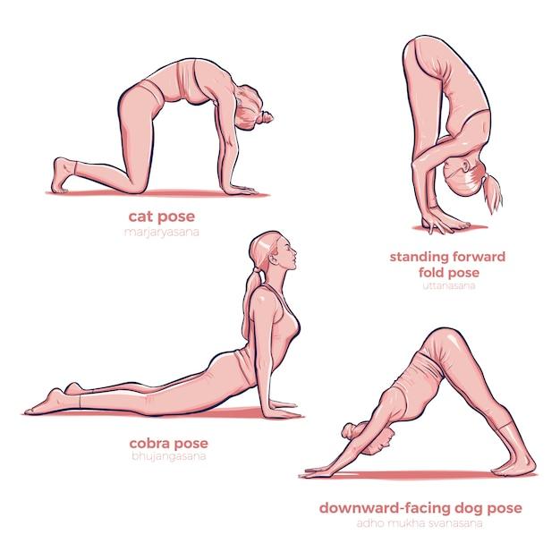 Yoga diferentes estiramientos fitness poses vector gratuito