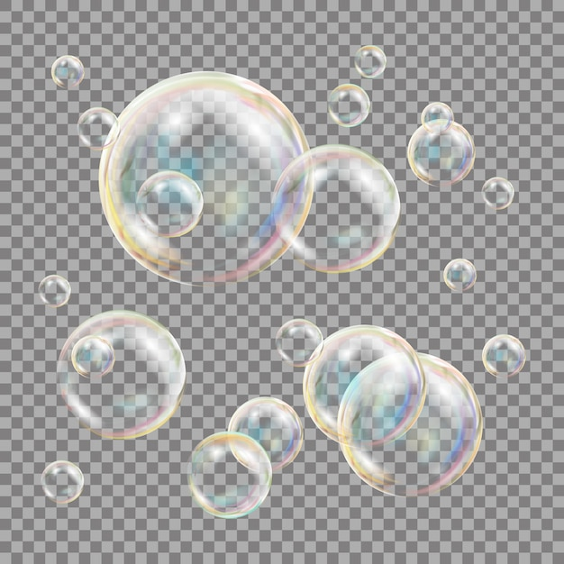3d seifenblasen transparent Premium Vektoren