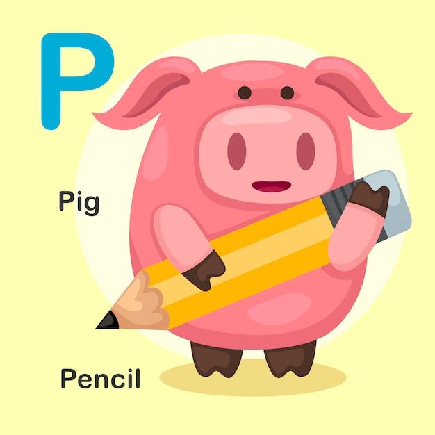 Abbildung getrenntes tieralphabet-zeichen p-schwein, bleistift Premium Vektoren