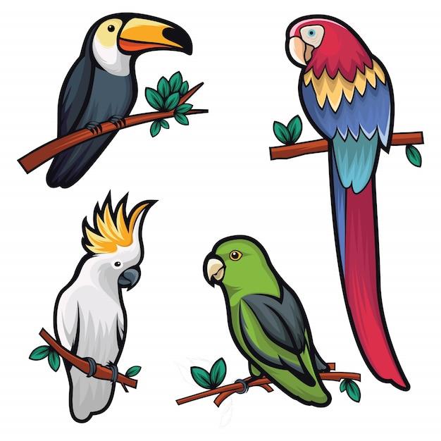Abbildung von vier kühlen vögeln Premium Vektoren