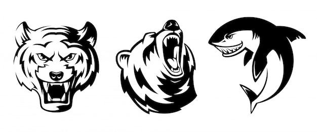 Abbildungen von tieren für sportabzeichen. grizzly, tiger und hai. Premium Vektoren