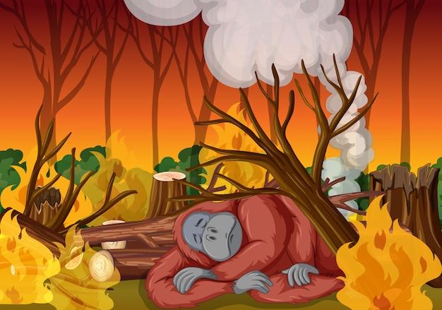 Abholzungsszene mit affen und verheerendem feuer Kostenlosen Vektoren