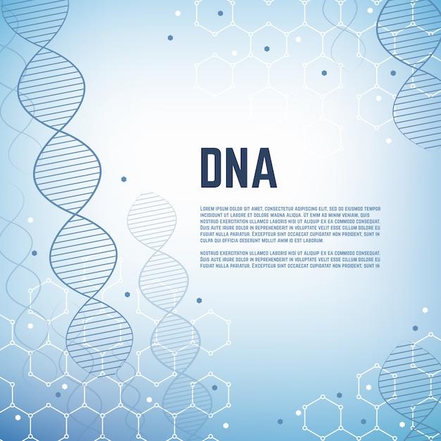 Abstrakte genetikwissenschaftsvektor-hintergrundschablone mit menschlichem chromosomenmolekülmodell dna Premium Vektoren