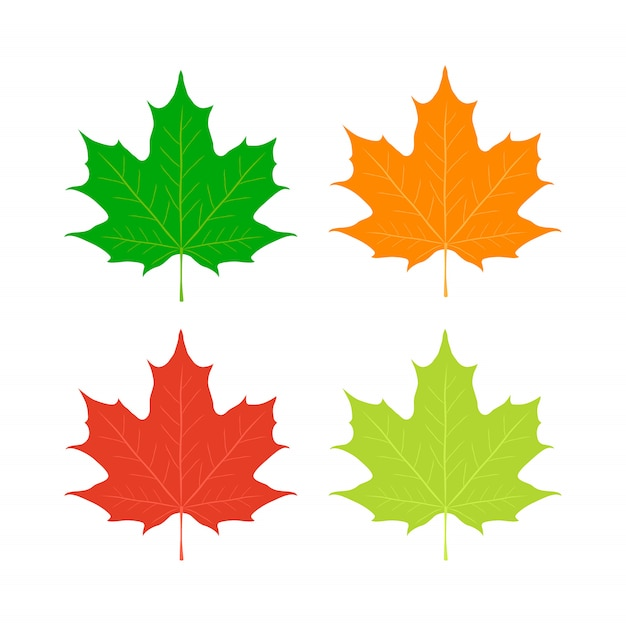 Ahornblätter, kanada-symbol. roter, orange, gelber ahorn Premium Vektoren