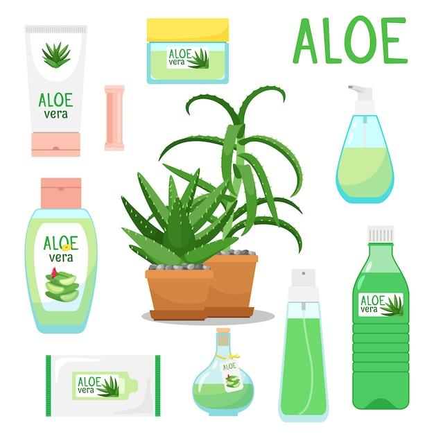 Aloe vera pflanzen- und produktset Premium Vektoren