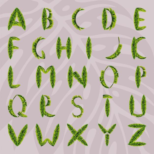 Alphabet aus palmblättern hergestellt Premium Vektoren