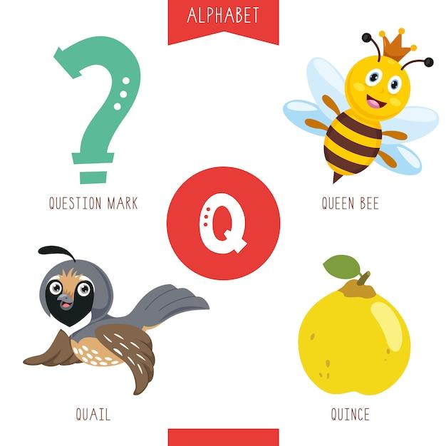 Alphabet buchstabe q und bilder Premium Vektoren