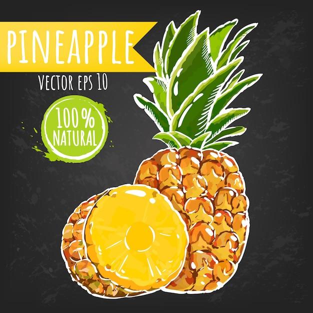 Ananas. helle skizzenart der frischen frucht. saftige tropische früchte. Premium Vektoren