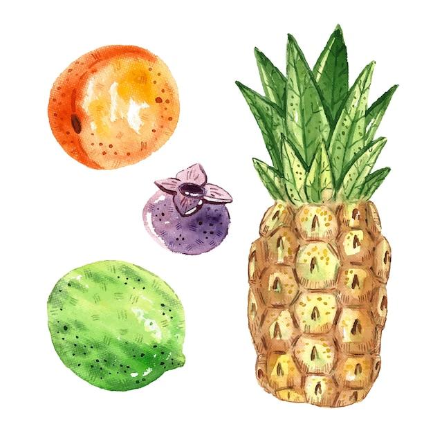 Ananas, limette, aprikose, blaubeere. tropische früchte clipart, eingestellt. aquarellillustration. rohes frisches gesundes essen. vegan, vegetarisch. sommer. Premium Vektoren