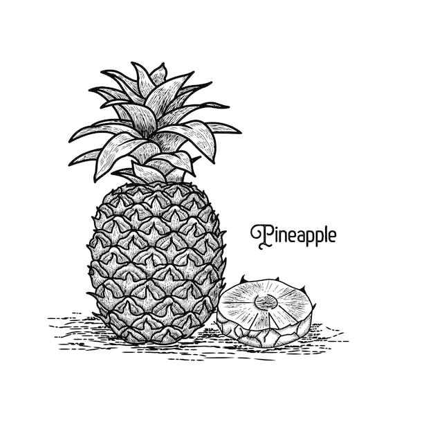 Ananas-vintage-stil Premium Vektoren