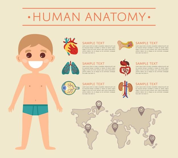 Anatomieschablone des menschlichen körpers mit lächelndem kind Premium Vektoren