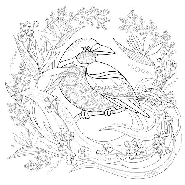 anmutiger vogel malvorlagen im exquisiten stil  premium