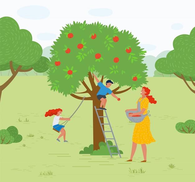 Apfelbaum-frauen-sammeln-frucht-kind, das vektor spielt Premium Vektoren