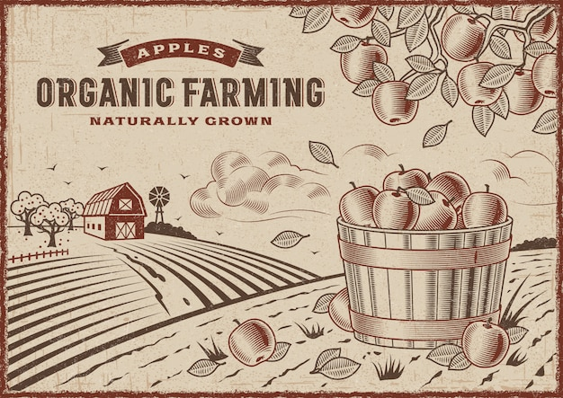 Apple bio-landschaft Premium Vektoren