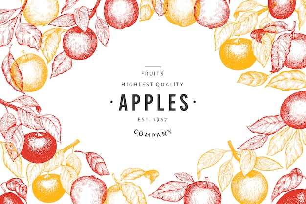 Apple verzweigt sich vorlage. hand gezeichnete gartenfruchtillustration. Premium Vektoren