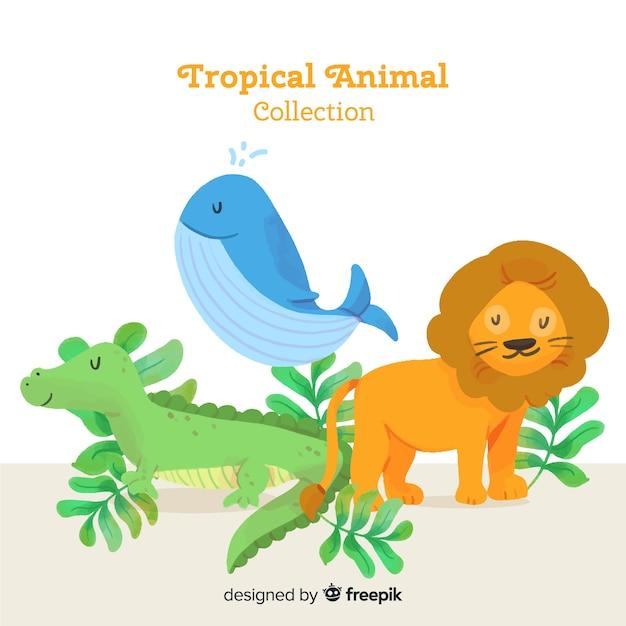 Aquarell exotische tropische tiersammlung Kostenlosen Vektoren