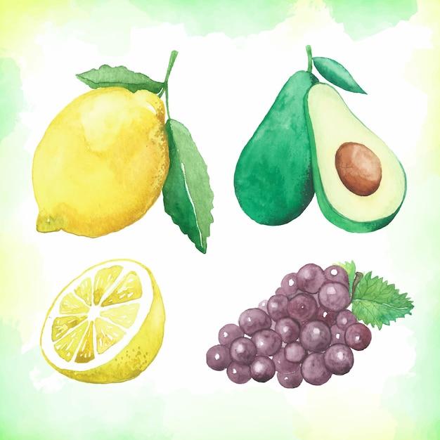 Aquarell-frucht-sammlung Premium Vektoren