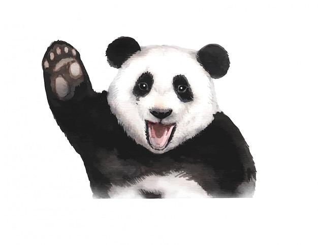 Aquarell handgemalte pandabärenillustration Premium Vektoren