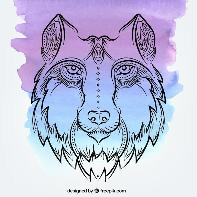 Aquarell hintergrund mit hand gezeichnet wolf Kostenlosen Vektoren