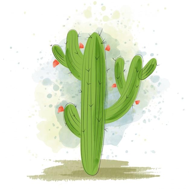 Aquarell kaktus blühen Premium Vektoren